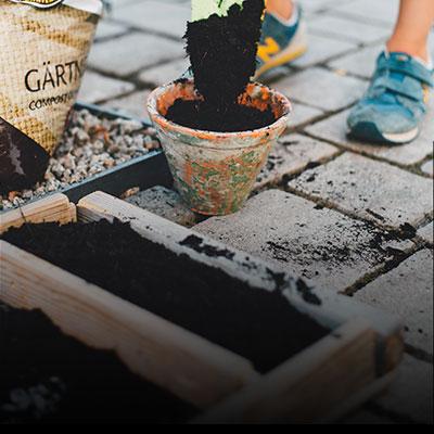 box-soil-2